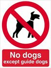NO DOGS EXCEPT GUIDE DOGS - saftey warning signs - sign - PR042 sticker / rigid
