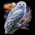 White Snowy Owl on Branch   Tshirt   Sizes/Colors