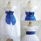 NEW VB WHITE/ROYAL BLUE PAGEANT WEDDING KIDS PARTY TODDLER FLOWER GIRL DRESS