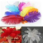 New 10-50pcs Natural Ostrich Feathers Color Quantity Optional 8-10inch/20-25cm