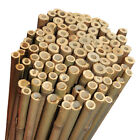5ft Extra Strong Heavy Duty Professional Bamboo Plant Support Garden Canes