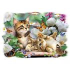 Playtime Kittens & Butterflies  Tshirt  Sizes/Colors