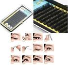 Box of 12pcs Natural Curl Black False Eyelashes Strip Eyelashes 9/11/13mm J1018