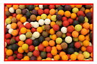 15mm Mixed Boilies - Krill / Scopex / Robin Red / Pineapple / Plum etc mix