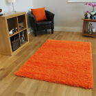 Clearance Ultra Soft Orange Shaggy Rugs Modern Dense Anti Shedding Floor Mats