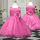 USM2D58 Hot Pink Bridesmaid Pageant Baby Easter Flower Girls Dress 1 to 13 Y