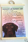 CHOCOLATE LAB PROPERTY LAWS WALL HANGING DOG NOVELTY  25