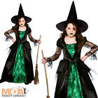 Deluxe Emerald Witch Girls Fancy Dress Halloween Child Kids Witches Costume