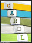 Canvas WEB Belt U to Z INITIALED SILVER Buckle Military