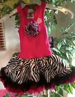 Fun Hot Pink Zebra Satin Chiffon Sleeveless Tutu Dress, 6M-5/6 USA, Special Tee