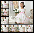 UKHP5303 Halloween X'mas Hot Pink Wedding Flower Girls Dresses Age 3-6