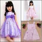 Baby Kids Girls Flower Tulle Princess Dress Lace Wedding Party Dress Size 2-6Y