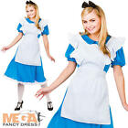 Alice In Wonderland Ladies Fancy Dress Fairytale Book Week Womens Adult Costume