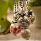 Retro Handmade Silver Conch Glass Fish Sand Lucky Wishing Bottle Necklace Gifts