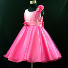 U HP668 Hot Pink Wedding Party Flower Girls Dresses AGE 2-3-4-5-6-7-8-10-12Years