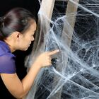 Stretchy Spider Web Cobweb With Spider Party for Halloween Decoration LL