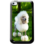 Poodle Caniche Barbone Fluffy Dog Hard Case For iPod Touch 4th Gen