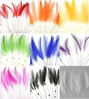 Hackle Coque Feather Fringe for Crafts, Sewing, Costuming, Fascinators and Hats