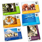 500 Pezzi WWF Puzzle {Paul Lamond Games}