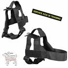 Onie Canine Search Harness - UK Made with Lifetime Guarantee All Sizes Available