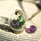 Amethyst Terrarium Wish Necklace Raw Crystal Gemstone Real Flower Glass Pendant