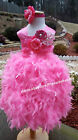 Couture pink lace Feather dress flower girl Birthday Surprise all the kids size