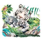 White Tiger Family   White Tigers  Tshirt  Sizes/Colors
