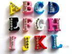 New arrived 5PCS 8MM half crystal slide letters charms fit pet collar wristband