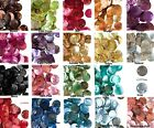 100 Mussel Shell Coin Drop Charms  * 10mm ** Many Colors Available