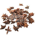 SCENTED STAR ANISE - CRAFT CHRISTMAS POT POURRI WREATH FLORIST FLORAL DECORATION