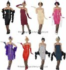 8-26 Fringe Flapper Costume + Headband Long Gloves Ladies 20s Fancy Dress Outfit
