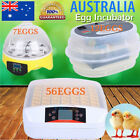 7/12/56 Fully Automatic Digital Thermostat Duck Egg Incubator Poultry Chicken