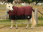 Rhinegold Thor Heavy Weight Horse Pony Waterproof Outdoor Turnout Rug 350gsm