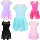 Cute Girls Gymnastic Ballet Leotard Dress Skate Flower Lace Chiffon Skirt 3-12Y