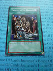 Tribute to the Doomed 5DS2-EN024 Yu-Gi-Oh Common Card English New