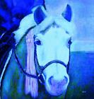 HORSE PRINT Giclee PONY Art FIRST RIBBON artist BETS 6 COLORS print size 14 X 16