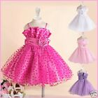 Hot Pink Christmas Wedding Party Flower Girls Dresses SIZE 1 2 4 5 6 8 9 10 12Y