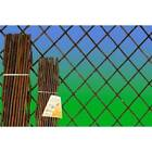Expanding Natural Willow Trellis - Willow Wall Trellis - Available in 4 Sizes