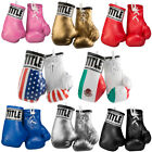 Title Boxing 3.5' Authentic Detailed Mini Lace Up Gloves
