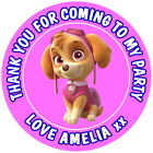 PERSONALISED PAW PATROL SKYE GLOSS PARTY BAG BOX STICKERS SWEET CONES 4 SIZES