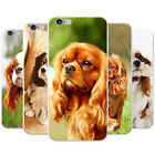 Cavalier King Charles Spaniel Dog Hard Case Phone Cover for Huawei Phones
