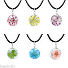 BD Women Girl Fashion Dried Flower Glass Ball Leather Necklace Jewelry Gift