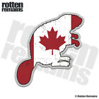 Beaver Decal Canadian Flag Hunting Canada Hunter Gloss Sticker (RH) HVG