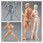 Figure Ferrite Action Play Arts Kai Anime Model Drawing Figma Kids Body Toy