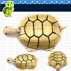 Wood Simulated Collectible Squirrel / Tortoise Play Toy for Children Funny LD