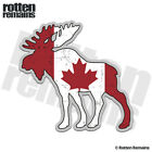 Moose Decal Canada Flag Canadian Hunting Bow Hunter Gloss Sticker (LH) HVG