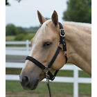 Внешний вид - Wire Horse Neo Padded Nylon Adjustable Horse Halter NEW