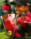 Tiger Woods PGA Professional Golfer Art 03 8x10 - 48x36