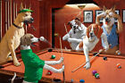 HD Print Dogs Playing Billiards Oil painting Art Giclee Printed on canvas P779 $20.34 CAD on eBay