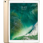 Apple iPad Pro (2nd Gen) (12.9 inch)- 512GB - Wi-Fi - Cellular